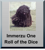 Immerzu One Roll of the Dice