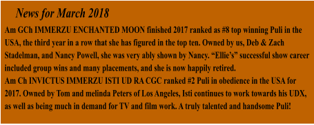 "News for March 2018 Am GCh IMMERZU ENCHANTED MOON finished 2017 ranked as #8 top winning Puli in the USA, the third year in a row that she has figured in the top ten. Owned by us, Deb & Zach Stadelman, and Nancy Powell, she was very ably shown by Nancy. ""Ellie's"" successful show career included group wins and many placements, and she is now happily retired. Am Ch INVICTUS IMMERZU ISTI UD RA CGC ranked #2 Puli in obedience in the USA for 2017. Owned by Tom and melinda Peters of Los Angeles, Isti continues to work towards his UDX, as well as being much in demand for TV and film work. A truly talented and handsome Puli!"
